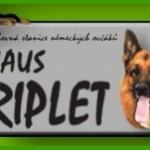 baner_haustriplet