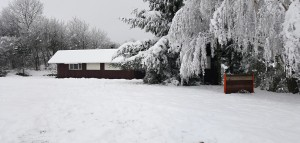 KK-Bánov-zima-2017